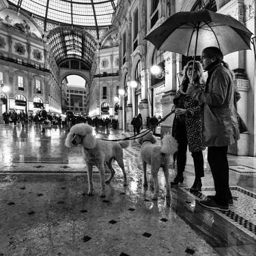 Street Milano 01