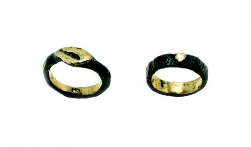 Ritrovamenti Seal Rings