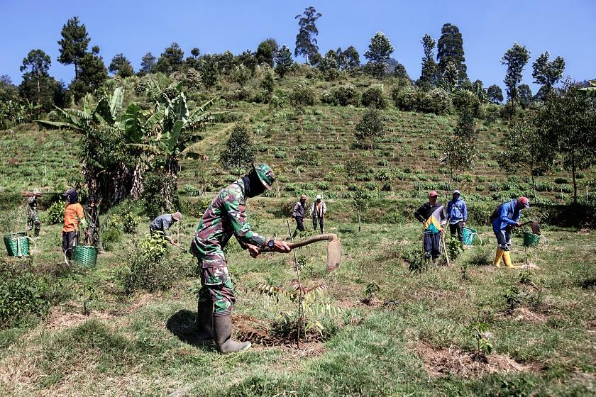 Tarumaya Village, Bandung Regency, West Jawa, Indonesia, 2019 - Il programma di riforestazione dell'Esercito consiste nel ripiantumare le colline che circondano il lago Cisanti, da cui nasce il fiume Citarum, per combattere l'erosione e stimolare l'economia introducendo la coltivazione del caffè. Coltivazione a terrazze, piantagione di alberi coltivati nel vivaio e educazione ambientale sono le ambizioni del programma.