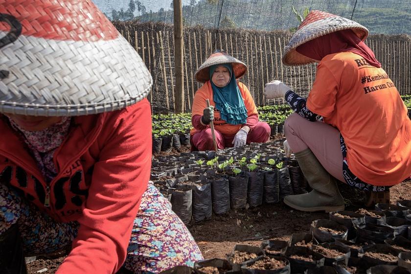 """Tarumaya Village, Bandung Regency, West Jawa, Indonesia, 2019 - Alcune donne residenti nel vicino villaggio di Tarumaya sono state inserite nel progetto governativo di rivitalizzazione """"Citarum Harum"""", del quale indossano anche la maglietta promozionale. Il programma, secondo le stime del Governo, durerà almeno altri 5 anni."""